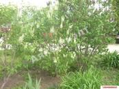 Дачи и огороды,  Краснодарский край Краснодар, цена 2 490 000 рублей, Фото
