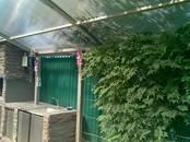 Дома, хозяйства,  Краснодарский край Краснодар, цена 29 500 000 рублей, Фото