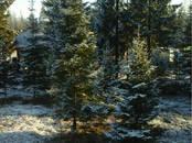 Дома, хозяйства,  Ленинградская область Всеволожский район, цена 12 300 000 рублей, Фото