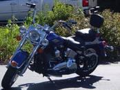 Мотоциклы Harley-Davidson, цена 200 000 рублей, Фото