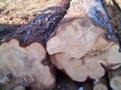 Стройматериалы,  Материалы из дерева Брёвна, цена 1 500 рублей, Фото