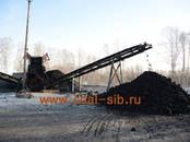 Дрова, брикеты, гранулы Уголь, цена 820 рублей/т., Фото