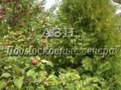 Дачи и огороды,  Московская область Дмитровское ш., цена 2 100 000 рублей, Фото