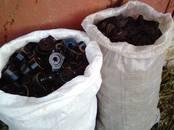 Экскаваторы гусеничные, цена 100 рублей, Фото