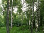 Земля и участки,  Нижегородская область Другое, цена 3 900 000 рублей, Фото