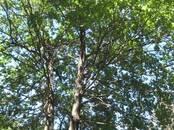 Земля и участки,  Саратовская область Саратов, цена 600 000 рублей, Фото