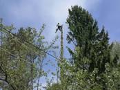 Хозяйственные работы Вырубка леса, цена 500 рублей, Фото