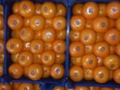 Продовольствие Фрукты, цена 100 рублей/т., Фото