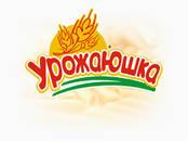 Оборудование, производство,  Пищевая промышленность Другое, цена 17 рублей, Фото