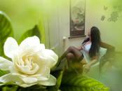Здоровье, красота,  Массажные услуги Класcический массаж, цена 2 500 рублей, Фото