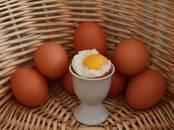 Продовольствие Яйца, цена 42 рублей, Фото