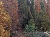 Дома, хозяйства,  Ростовскаяобласть Азов, цена 7 500 000 рублей, Фото