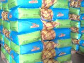 Сельское хозяйство Семена и рассада, цена 4 700 рублей, Фото