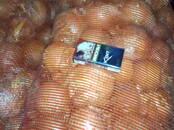 Продовольствие,  Овощи Лук, цена 10 рублей/кг., Фото