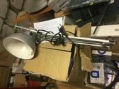 Разное и ремонт Лампочки, цена 600 рублей, Фото