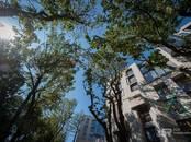 Квартиры,  Санкт-Петербург Другое, цена 39 377 000 рублей, Фото