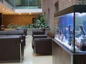 Офисы,  Москва Павелецкая, цена 258 000 рублей/мес., Фото