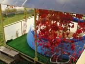Дома, хозяйства,  Ярославская область Другое, цена 6 000 рублей/день, Фото