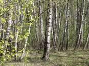 Земля и участки,  Московская область Наро-Фоминский район, цена 445 000 рублей, Фото