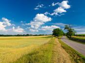 Земля и участки,  Калужская область Малоярославец, цена 400 000 рублей, Фото