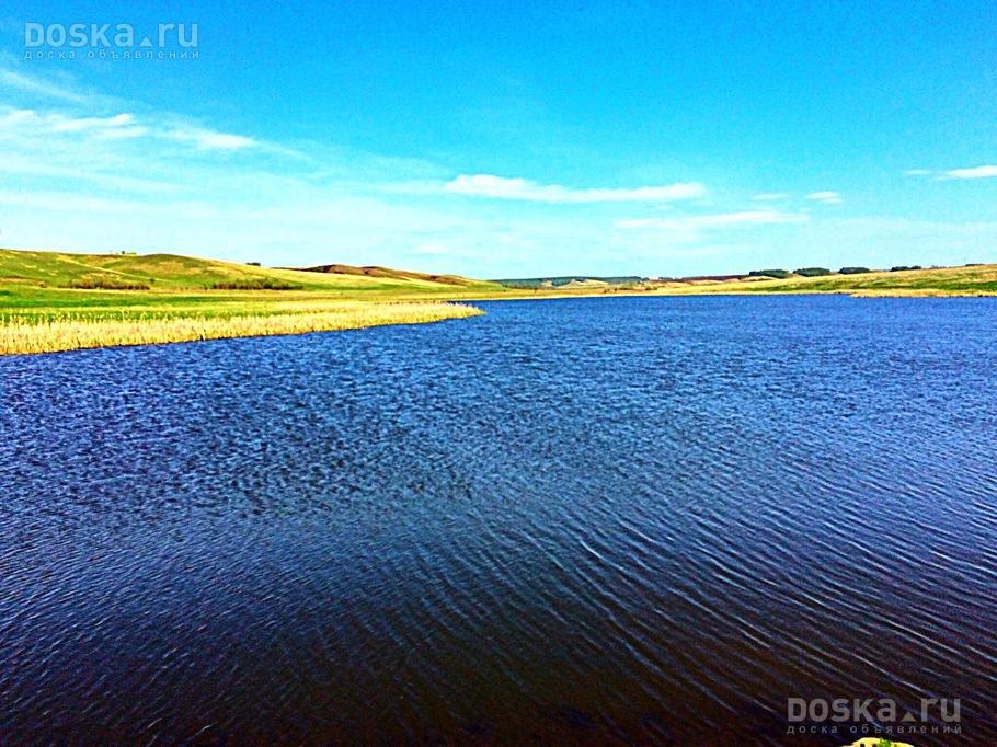 Доска красноярск