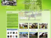 Интернет-услуги Web-дизайн и разработка сайтов, цена 8 990 рублей, Фото