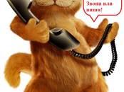 Курсы, образование,  Курсовые, рефераты, дипломы Дипломы, цена 500 рублей, Фото