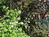 Дачи и огороды,  Московская область Электрогорск, цена 1 450 000 рублей, Фото