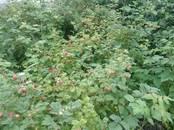 Дачи и огороды,  Челябинская область Челябинск, цена 550 000 рублей, Фото