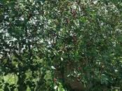 Земля и участки,  Ставропольский край Кисловодск, цена 800 000 рублей, Фото