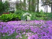 Квартиры,  Новосибирская область Бердск, цена 5 349 000 рублей, Фото