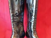 Обувь,  Женская обувь Сапоги, цена 3 300 рублей, Фото