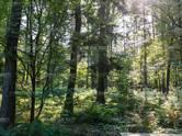 Дома, хозяйства,  Московская область Истринский район, цена 75 716 810 рублей, Фото