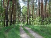Земля и участки,  Владимирская область Петушки, цена 110 000 рублей, Фото