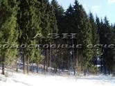 Земля и участки,  Московская область Хотьково, цена 2 300 000 рублей, Фото