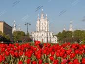 Квартиры,  Санкт-Петербург Другое, цена 60 996 000 рублей, Фото