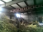 Ангары,  Кемеровскаяобласть Анжеро-Судженск, цена 6 000 000 рублей, Фото