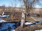 Дома, хозяйства,  Белгородскаяобласть Грайворон, цена 1 220 000 рублей, Фото