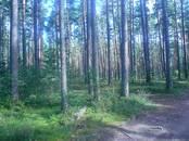Дома, хозяйства,  Ленинградская область Приозерский район, цена 3 990 000 рублей, Фото