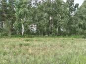 Земля и участки,  Красноярский край Емельяново, цена 500 000 рублей, Фото