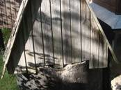 Дома, хозяйства,  Ленинградская область Выборгский район, цена 2 100 000 рублей, Фото