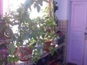 Дома, хозяйства,  Краснодарский край Другое, цена 2 800 000 рублей, Фото