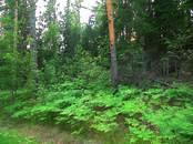 Земля и участки,  Ленинградская область Выборгский район, цена 425 000 рублей, Фото