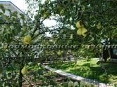 Дома, хозяйства,  Московская область Апрелевка, цена 12 800 000 рублей, Фото