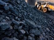 Дрова, брикеты, гранулы Уголь, цена 1 200 рублей/т., Фото