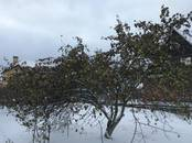 Дома, хозяйства,  Ленинградская область Всеволожский район, цена 10 500 000 рублей, Фото
