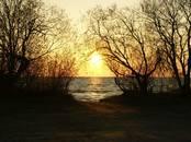 Земля и участки,  Псковская область Другое, цена 87 000 рублей, Фото