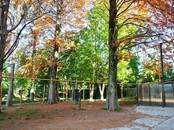 Квартиры,  Краснодарский край Сочи, цена 8 810 000 рублей, Фото