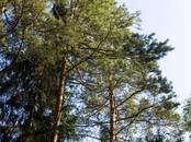 Земля и участки,  Московская область Сергиев посад, цена 500 000 рублей, Фото