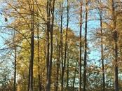 Земля и участки,  Ленинградская область Всеволожский район, цена 5 000 000 рублей, Фото